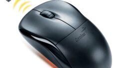 Mouse o ratón