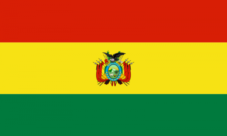 Partes de la bandera de Bolivia