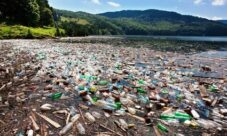 Causas del impacto ambiental