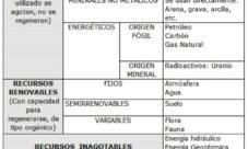¿Cómo  se clasifican los recursos naturales?