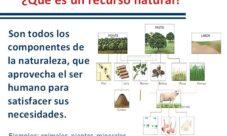 Definición de los recursos naturales