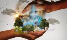 ¿Cómo prevenir el impacto ambiental?