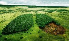 Soluciones para reducir el impacto ambiental