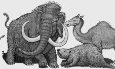 ¿A qué peligros se enfrentan los humanos en la prehistoria?