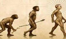 ¿Cuál es la importancia de la prehistoria?