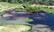 Causas de la contaminación del suelo