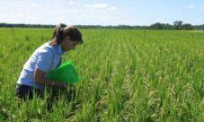 ¿Cómo evitar la contaminación del suelo?