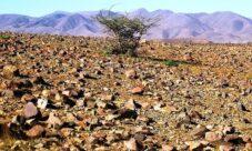¿Por qué se agotan los recursos naturales?