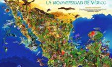 ¿Cuáles son los recursos naturales de México?