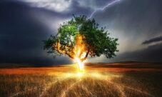 Los dioses de la luz (leyenda)