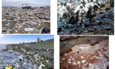 Ejemplos de contaminación del agua