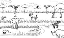 Imágenes de biomas para dibujar