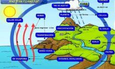¿Qué sucede durante el ciclo hidrológico?
