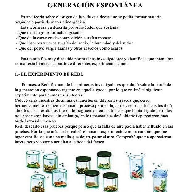 Características de la generación espontánea