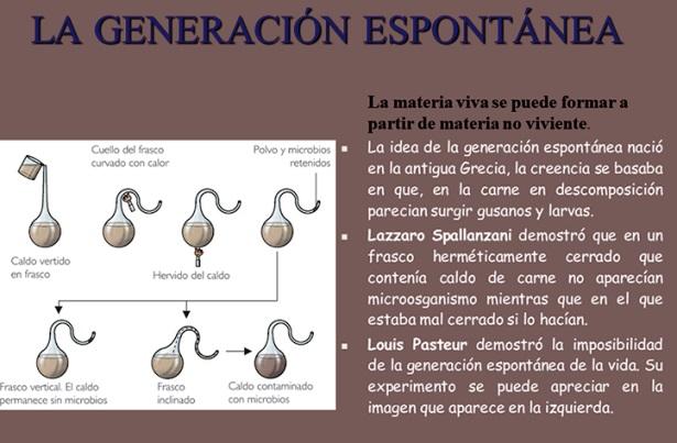 ¿Qué postula la teoría de la generación espontánea?