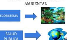 Cuáles son las consecuencias del impacto ambiental