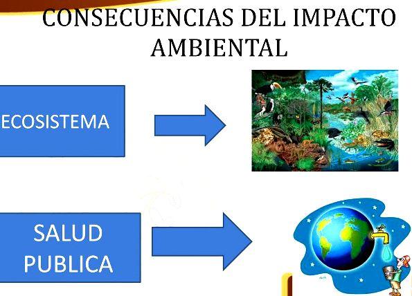 Consecuencias del impacto ambiental