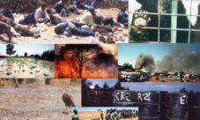 Ejemplos de impacto ambiental