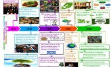Historia del desarrollo sustentable