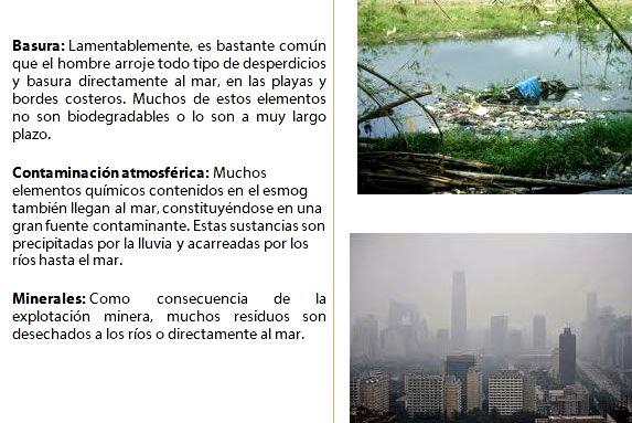 Impacto ambiental por el desarrollo humano