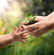 Medio ambiente y desarrollo sustentable
