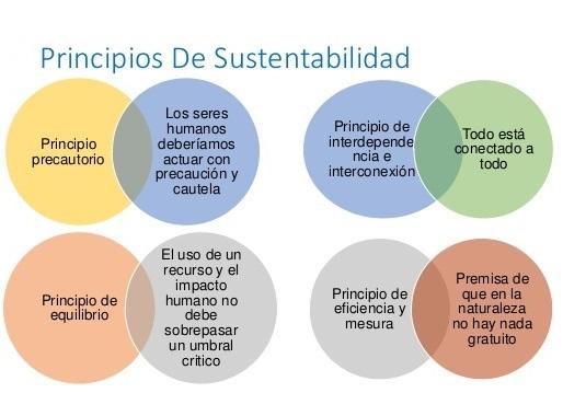 Principios del desarrollo sustentable